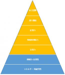 高次脳機能のピラミッド